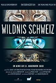 Wildnis Schweiz Poster