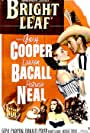 Lauren Bacall, Gary Cooper, and Patricia Neal in Bright Leaf (1950)