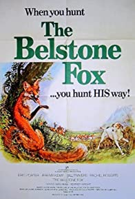 Primary photo for The Belstone Fox