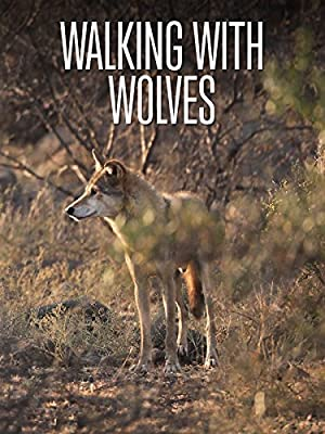 Where to stream Walking with Wolves