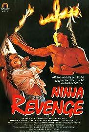 Ninja Vengeance Poster