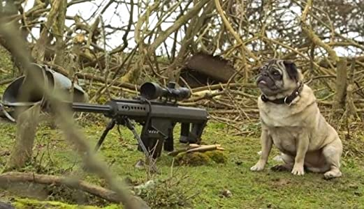 Sniper Pug full movie hd 720p free download
