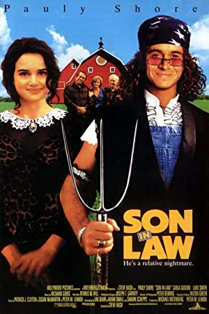 Son in Law Poster Image