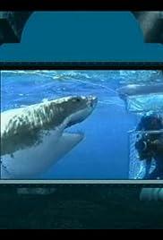 Undersea Adventure Poster