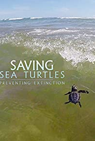 Primary photo for Saving Sea Turtles: Preventing Extinction