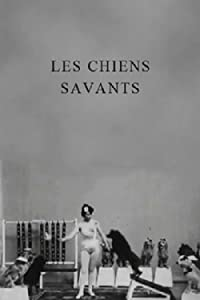 Watch online english movies list Les chiens savants by Alice Guy [640x640]