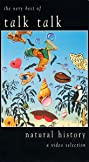 Natural History - The Very Best of Talk Talk (1990) Poster