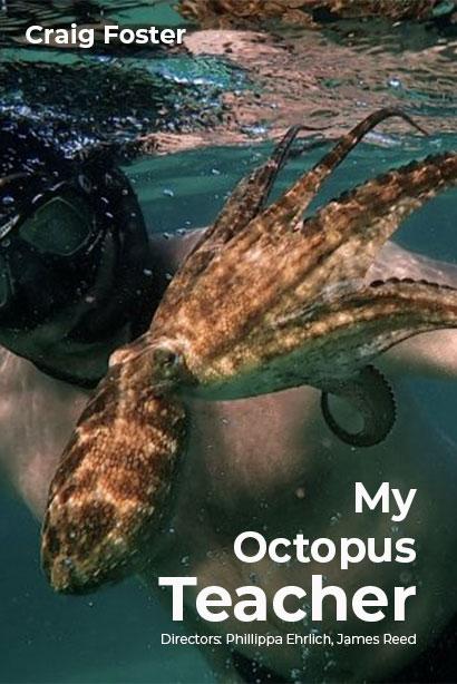 我的章魚老師 | awwrated | 你的 Netflix 避雷好幫手!