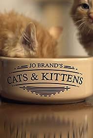 Jo Brand's Cats & Kittens (2016)