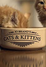 Jo Brand's Cats & Kittens
