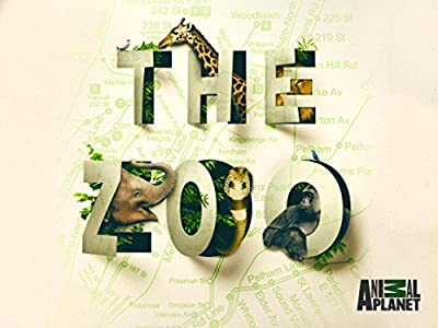 My movie library download The Zoo: Walk on the Wild Side