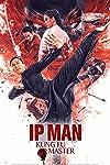 Ip Man: Kung Fu Master is Not Ip Man 5