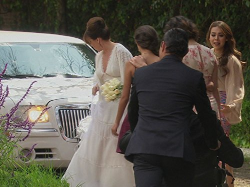Odiseo Bichir, Rebecca Jones, Danna Paola, Carlos Torres, Andrea Martí, and Michelle Olvera in La Doña (2016)