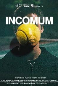 Primary photo for Incomum
