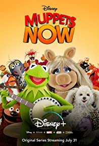 Primary photo for Muppets Now