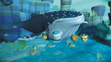 Octonauts and the Loneliest Whale