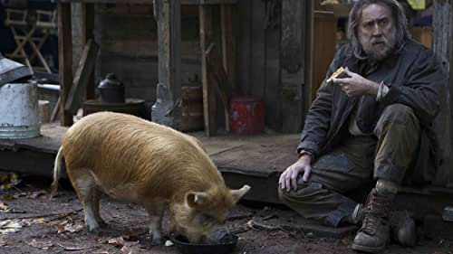 A truffle hunter who lives alone in the Oregonian wilderness must return to his past in Portland in search of his beloved foraging pig after she is kidnapped.