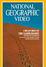 The Living Sands of Namib