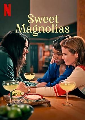 Where to stream Sweet Magnolias