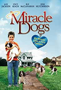 Primary photo for Miracle Dogs