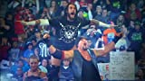 WWE: Smackdown: The Best of 2009-2010