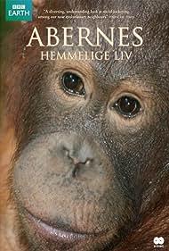 Among the Apes (2009)
