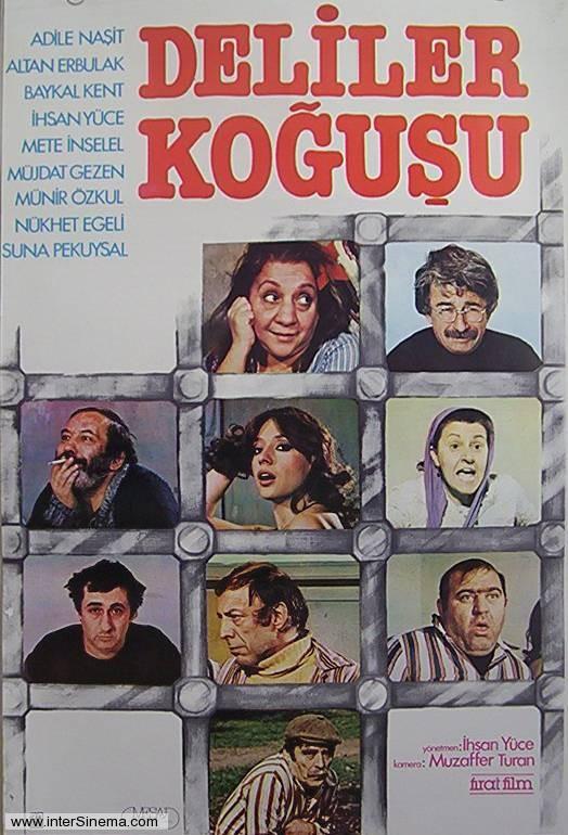 Deliler kogusu ((1981))