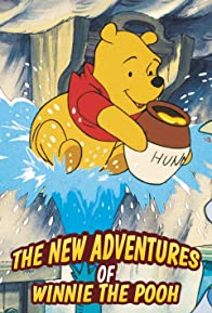 Primary photo for The New Adventures of Winnie the Pooh