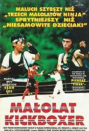 Little Kickboxer Poster