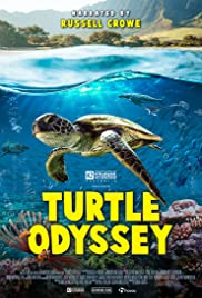 Turtle Odyssey (2019) 720p