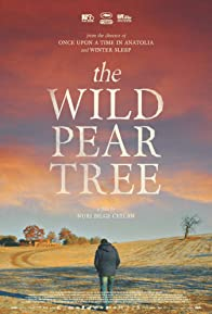 Primary photo for The Wild Pear Tree