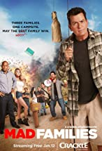 Primary image for Mad Families
