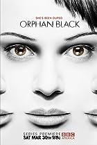 Orphan Black é uma das Séries Boas da Netflix Seriados