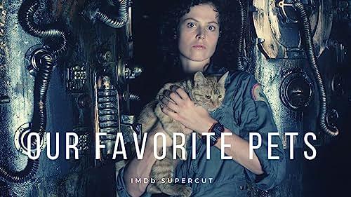 Our Favorite Pets | IMDb Supercut