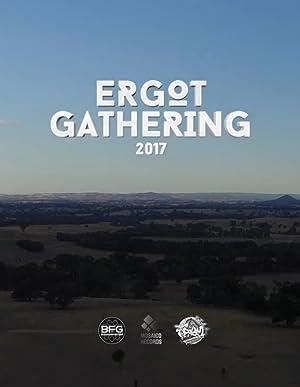 Ergot Gathering 2017 Retrospective