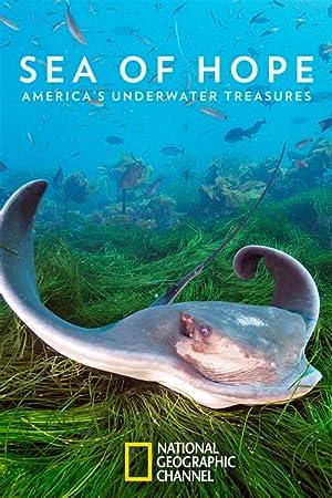 Sea of Hope: Americas Underwater Treasures