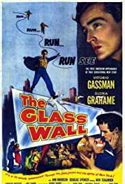 The Glass Wall Poster