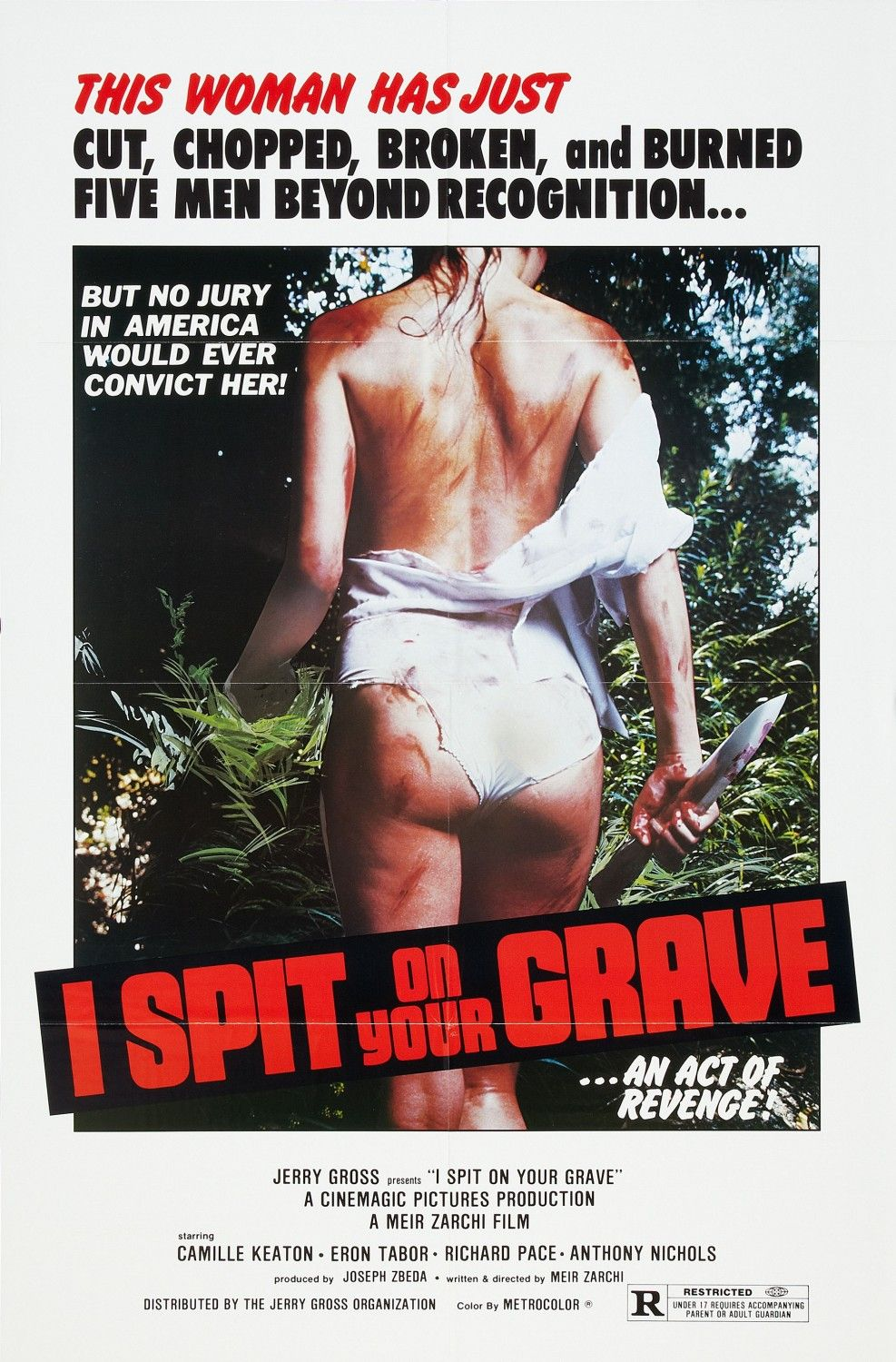 i spit on your grave full movie download 480p dual audio