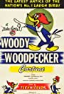 Woody Woodpecker Trailer: It's the Return of the Crazy One