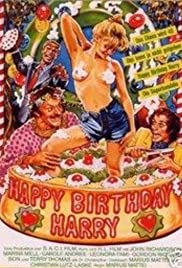 Happy Birthday, Harry Poster