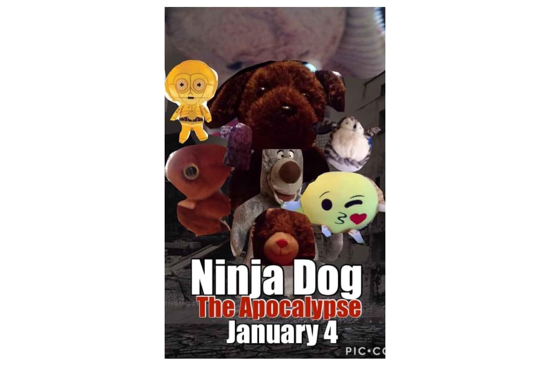 Ninja Dog: The Apocalypse (2019)