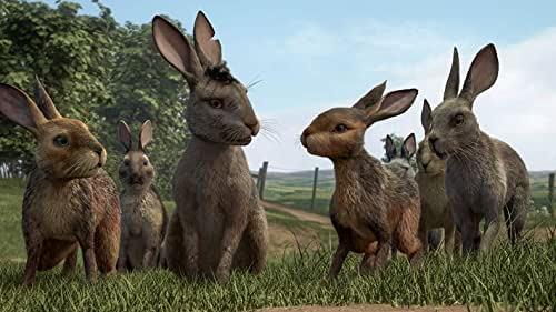 A tale of adventure, courage and survival that follows a band of rabbits as they flee the certain destruction of their home.
