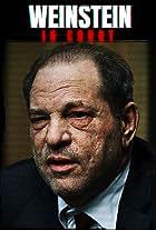 Weinstein: In Court