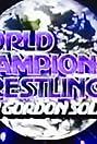 WWF World Championship Wrestling (1972) Poster
