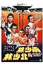 Invincible Shaolin (1978) Poster