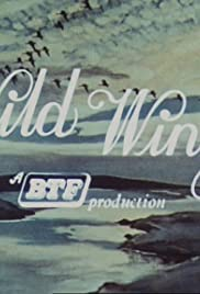 Wild Wings Poster