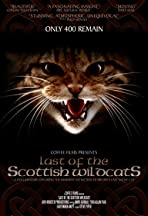 Last of the Scottish Wildcats