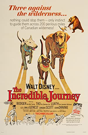 The Incredible Journey Poster Image