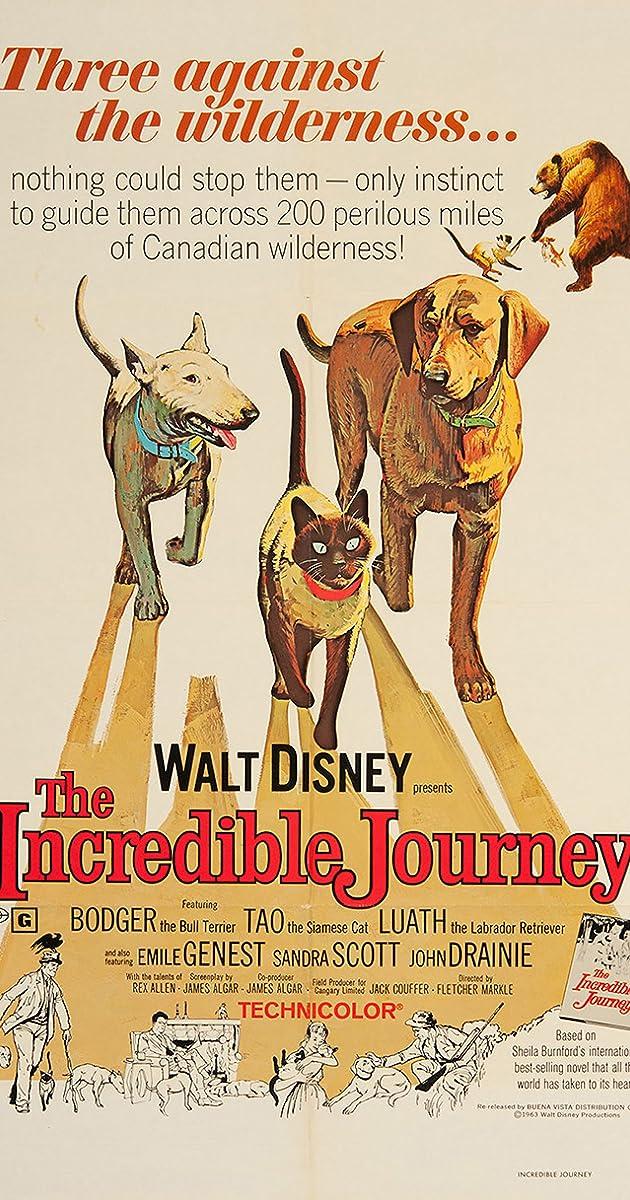 the incredible journey imdb