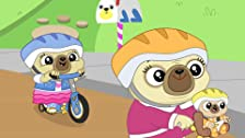 Chip's Big Bike Ride